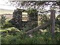 SN1631 : Ruin opposite Pistyll Teg by chris whitehouse