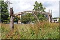 SU9950 : Chainsaw Sculpture, Woodbridge Meadows by Ian Capper