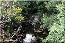 SO1252 : Stream, Cregrina, Powys by Christine Matthews