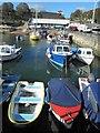 SX4553 : Mutton Cove harbour by Steve  Fareham
