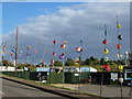 TF6533 : Kites at Snettisham by Richard Humphrey