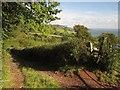 SX9267 : John Musgrave Heritage Trail approaching Maidencombe by Derek Harper