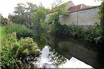SP7433 : Village pond by Philip Jeffrey