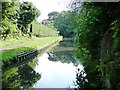 SO8480 : The Staffs and Worcs canal by Christine Johnstone