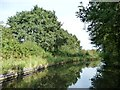 SO8685 : The Stourbridge canal and the Monarch's Way by Christine Johnstone