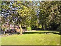 SJ9392 : Woodland off Woodlands Avenue by Gerald England