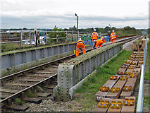TA0623 : Preparation Work for Track Renewal by David Wright