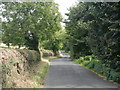 NZ0562 : Road from Bywell to Ovingham by Paul Franks