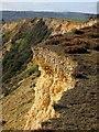 SY3793 : Cliff edge, Stonebarrow by Derek Harper