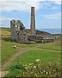 X4598 : 19th century copper mine at Tankardstown by Paul O'Farrell