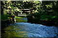 SU5732 : Weir on the River Alre, Alresford, Hampshire by Peter Trimming