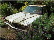 SK5838 : Vauxhall Ventora by Richard Croft