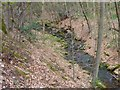 SO2625 : Woodland Stream above Pont Cadwgan by Ivan Hall