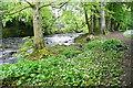 SX6960 : River Avon by Graham Horn