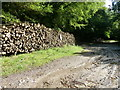 SU8416 : Log piles by Winden Wood and Linchball Wood by Dave Spicer