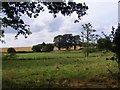 TM3775 : Looking towards the B1117 Halesworth Road by Adrian Cable