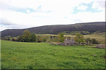 SK1780 : Above Bradwell Dale by Peter Turner
