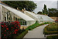 TQ2476 : Greenhouses at Fulham Palace, London by Peter Trimming