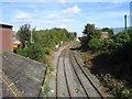 NZ2787 : Railway from Station Bridge by Alex McGregor
