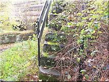 SJ7993 : Old stone steps by Christine Courtney