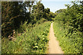 SK6733 : Grantham Canal towpath by Richard Croft