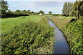 ST6192 : Drainage channel at Oldbury-on-Severn by Philip Halling