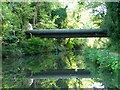 SP0578 : Big double pipe bridge across the canal by Christine Johnstone