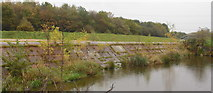 SJ7993 : Dry Weir near to Crossford Bridge by Christine Courtney