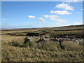 NY9107 : Derelict sheepfold beside Pennine Way by Trevor Littlewood