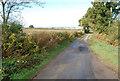 TQ9431 : Moor Lane, near Appledore by Julian P Guffogg