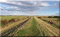 TQ8297 : Flood protection embankment by Roger Jones