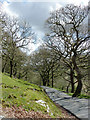 SN8453 : Mountain road to Abergwesyn, Powys by Roger  Kidd