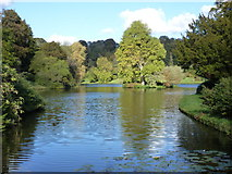 ST7733 : Stourhead: the lake from the Iron Bridge by Chris Downer