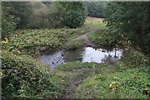 SE2332 : Stepping stones across Pudsey beck by Richard Kay
