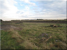 SE9546 : Former pit near Holme Wold House by Jonathan Thacker