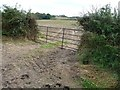 SK1525 : Field gate on the south side of Pipey Lane by Christine Johnstone