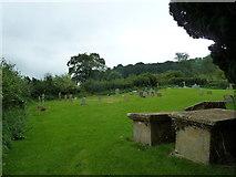 ST5906 : St Mary, Melbury Bubb: churchyard (A) by Basher Eyre