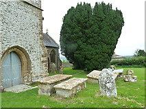 ST5906 : St Mary, Melbury Bubb: churchyard (D) by Basher Eyre