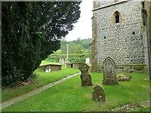 ST5906 : St Mary, Melbury Bubb: churchyard (H) by Basher Eyre