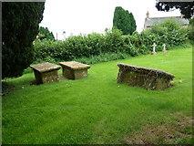 ST5906 : St Mary, Melbury Bubb: churchyard (L) by Basher Eyre