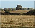 TA0715 : Howe Hill Round Barrow by David Wright