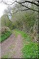 SO3811 : Byway to Tynewydd Farm by Graham Horn