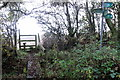 SP8226 : Footpath over a ditch by Philip Jeffrey