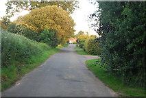 TG1607 : School Lane by N Chadwick