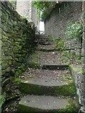 SE0125 : Thorn Bank Steps, Mytholmroyd by Humphrey Bolton