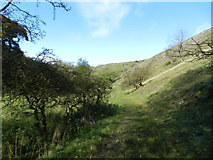 SK0955 : Footpath west of Wetton Hill by Peter Barr