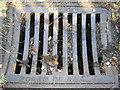 TQ3370 : Croydon Board of Health drain grid, Fox Hill by Christopher Hilton