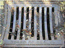 TQ3370 : Croydon Board of Health drain grid, Fox Hill by Christopher Hilton
