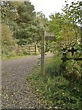SK2652 : Junction of paths around Carsington Water reservoir by Chris Morgan