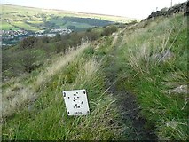 SE0125 : Air valve marker on Hebden Royd FP63 by Humphrey Bolton